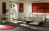 Kovová postel Arabela 140x210