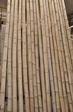 Bambusová tyè  prùmìr 9-10 cm, délka 3,9 metru - vzhledové vady