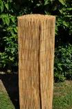 Rohož plotová rákos 130x500 cm