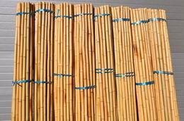 Bambusová tyè 3- 4 cm, délka 2 metry