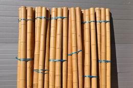 Bambusová tyè prùmìr 8-10 cm a délka 4 metry