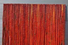 Bambusový plot 2x1,8 m, 26-35 mm barvený vínový