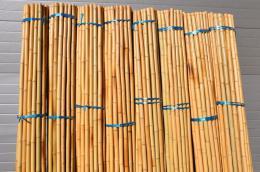 Bambusová tyè 4- 5 cm, délka 2 metry