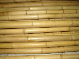 Bambusová tyè 3- 4 cm, délka 2 metry podélnì prasklá