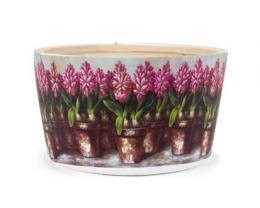 obal na kvìt.kulatý Hyacint