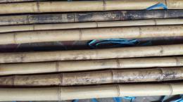 Bambusová tyè 4,5-6cm, délka 4 metry - nestandard