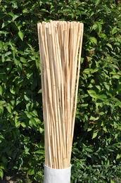 Tyèky ke kvìtinám délka 30 cm