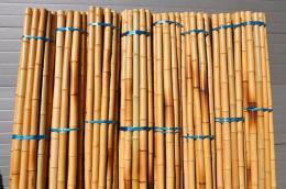 Bambusová tyè 5-6 cm, délka 2 metry