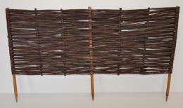 Plùtek vrbový výška 40 cm