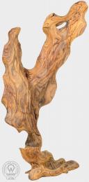 WILL - plastika z rosewoodu