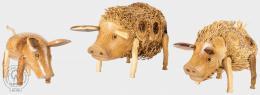 PIG - prasátko z tropického døeva